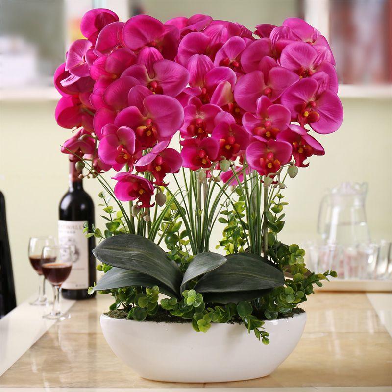 Encontrar m s bonsais informaci n acerca de alta flor de for Todo sobre decoracion de interiores