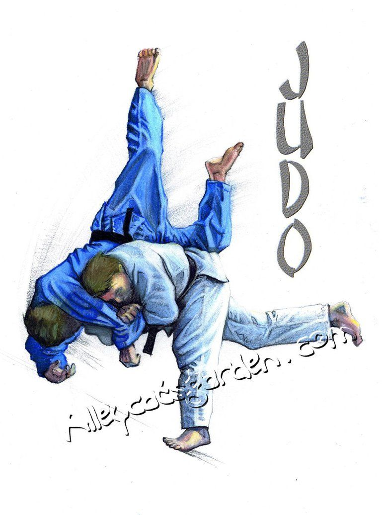 Judo Wallpaper Wallpapersafari Judo Judo Karate Judo Throws