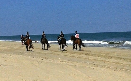 Horseback Ride Along The Beach At Cape Henlopen State Park Is A Great Way To Be Physically Active