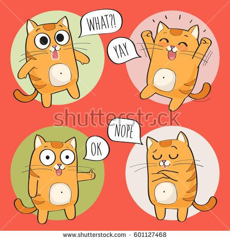 set of cute cat stickers in various poses cartoon cat
