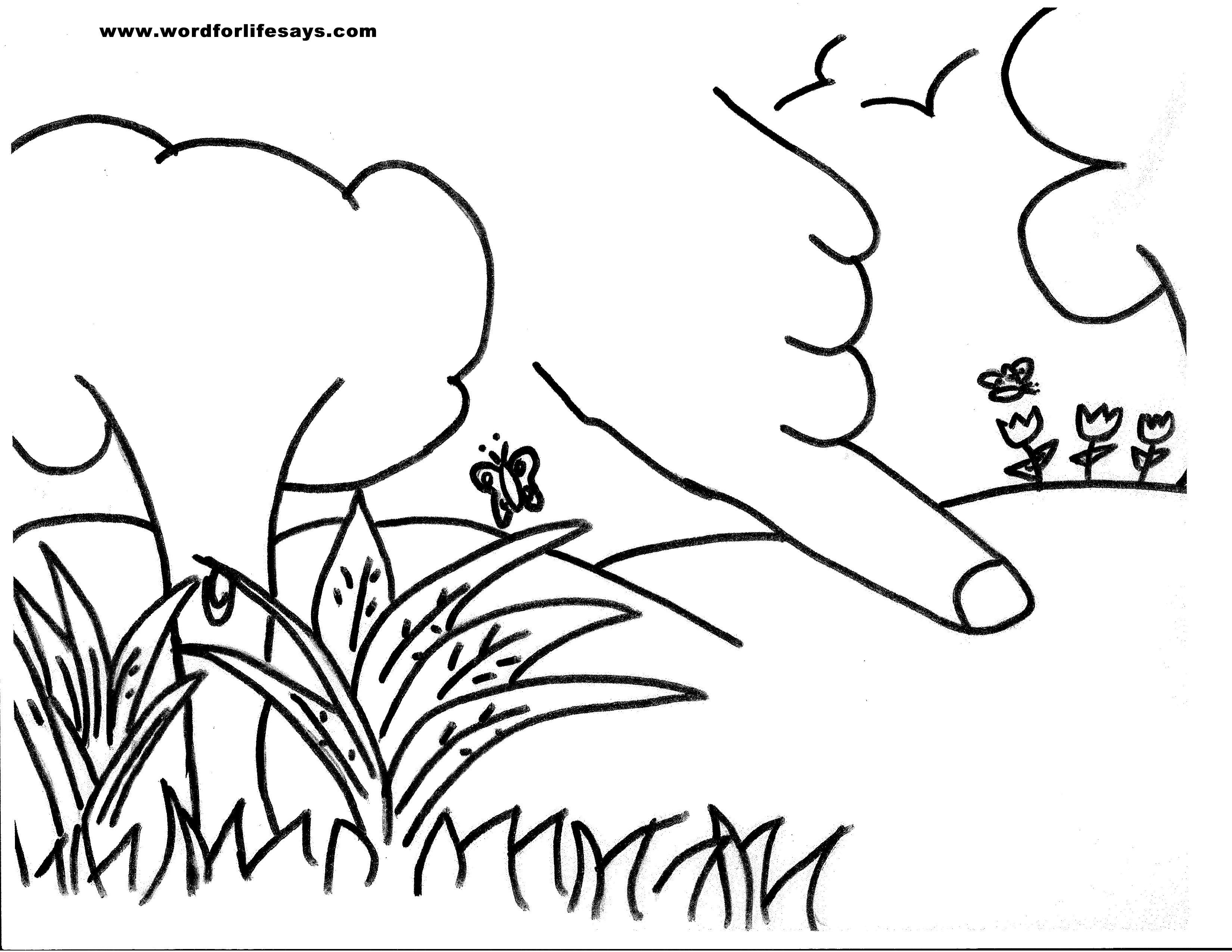 Tree Of Knowledge Of Good And Evil Free Coloring Pages Download Free Coloring Pages Coloring Pages Free Coloring