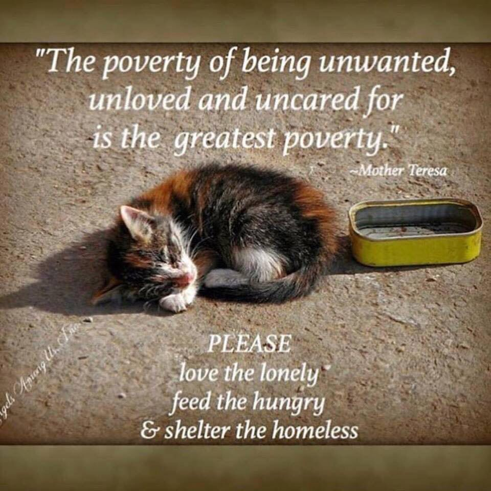 Helping Others Is How We Pay Rent On This Planet Remember Where