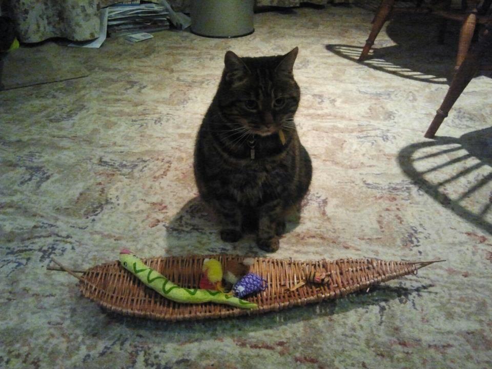 Sir Nigel Gresley and his new toy basket. Toy basket