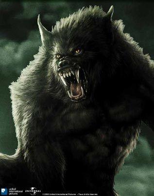 21 de noviembre, - El hombre lobo. Película: Van Helsing (). Una patada desagradable para todos los amantes de Universal Monsters de la vieja escuela, el director Stephen.