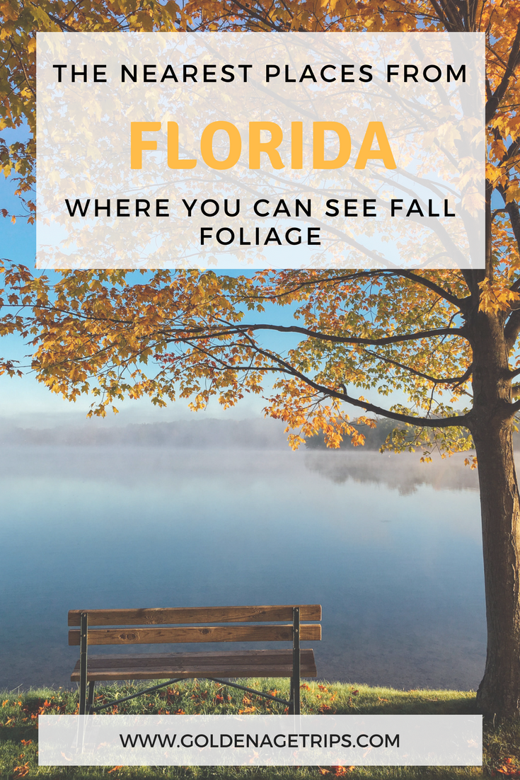 The nearest places from Florida where you can see Fall Foliage via @goldenagetrips
