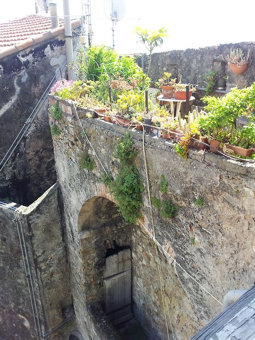 The writer Carolyn McKenzie roof terrace in Porta Nizza, Ventimiglia Alta, Italy