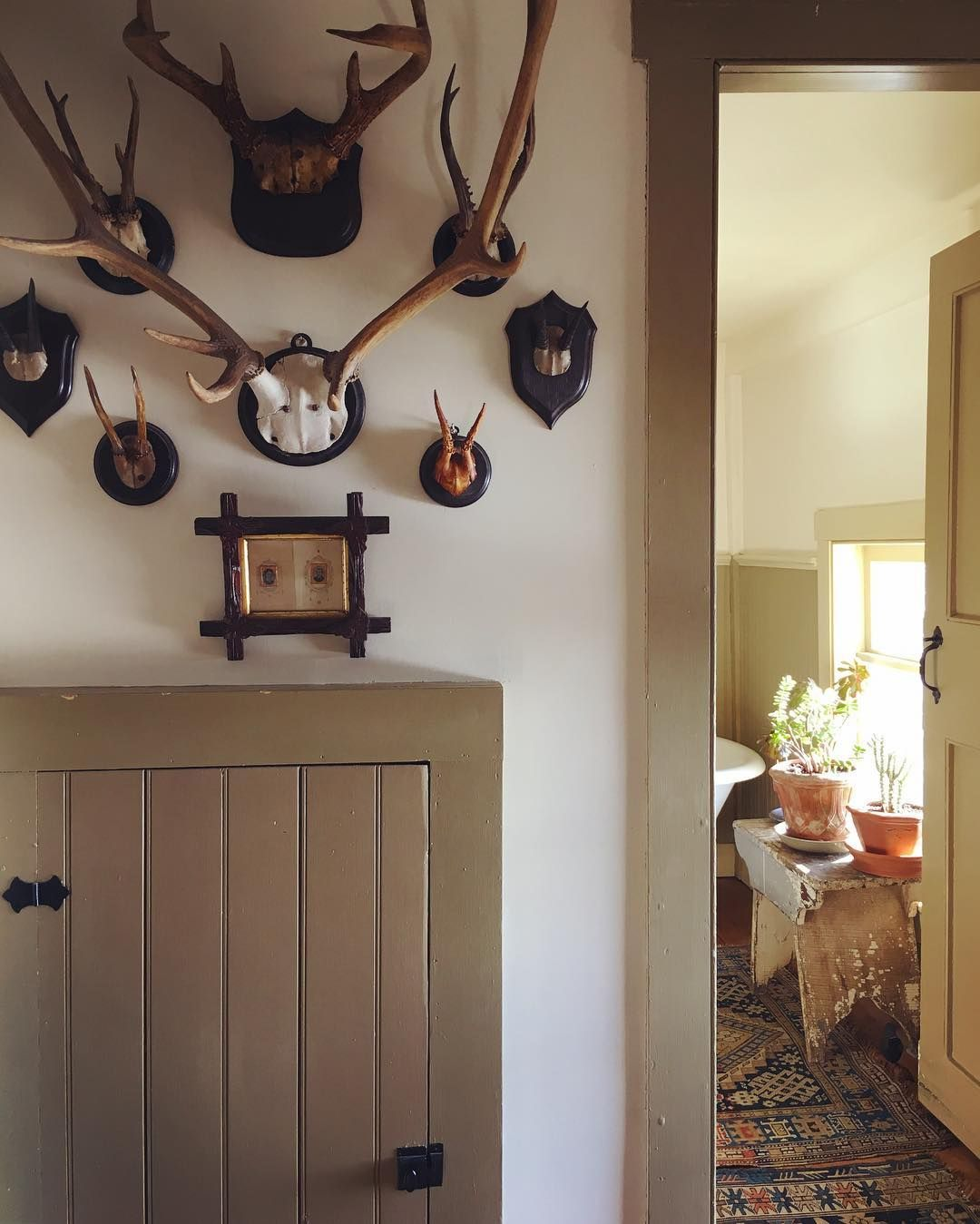 Stair Hall Still Life With Horns Trophyroom Upstateny