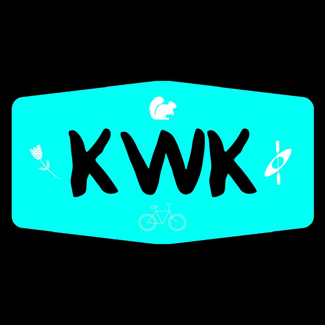 Kamping With Katie Gaming Logos Logos Nintendo Wii Logo