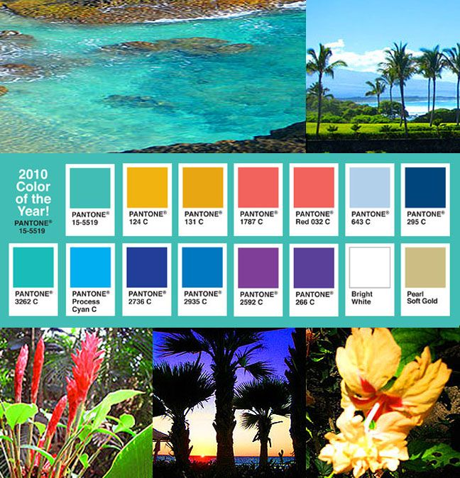 Bright And Colorful Rooms Tropical Style: Trying To Match Some Tropical Colors Together.