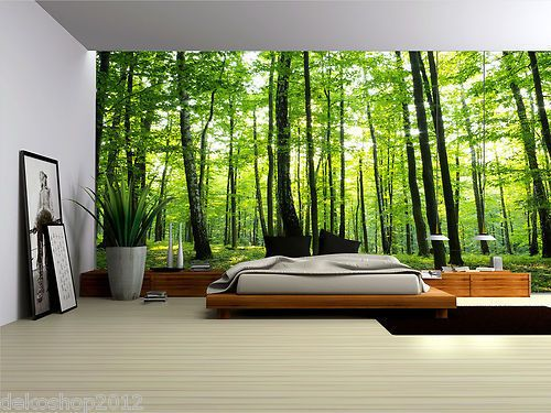 WALL MURAL PHOTO WALLPAPER PICTURE 186VE Forest Wood Landscape Trees