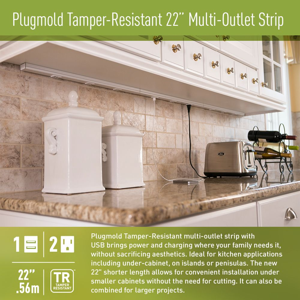 Legrand Plugmold 22 In 2 Outlet 2 Usb 22 In Hardwired Power
