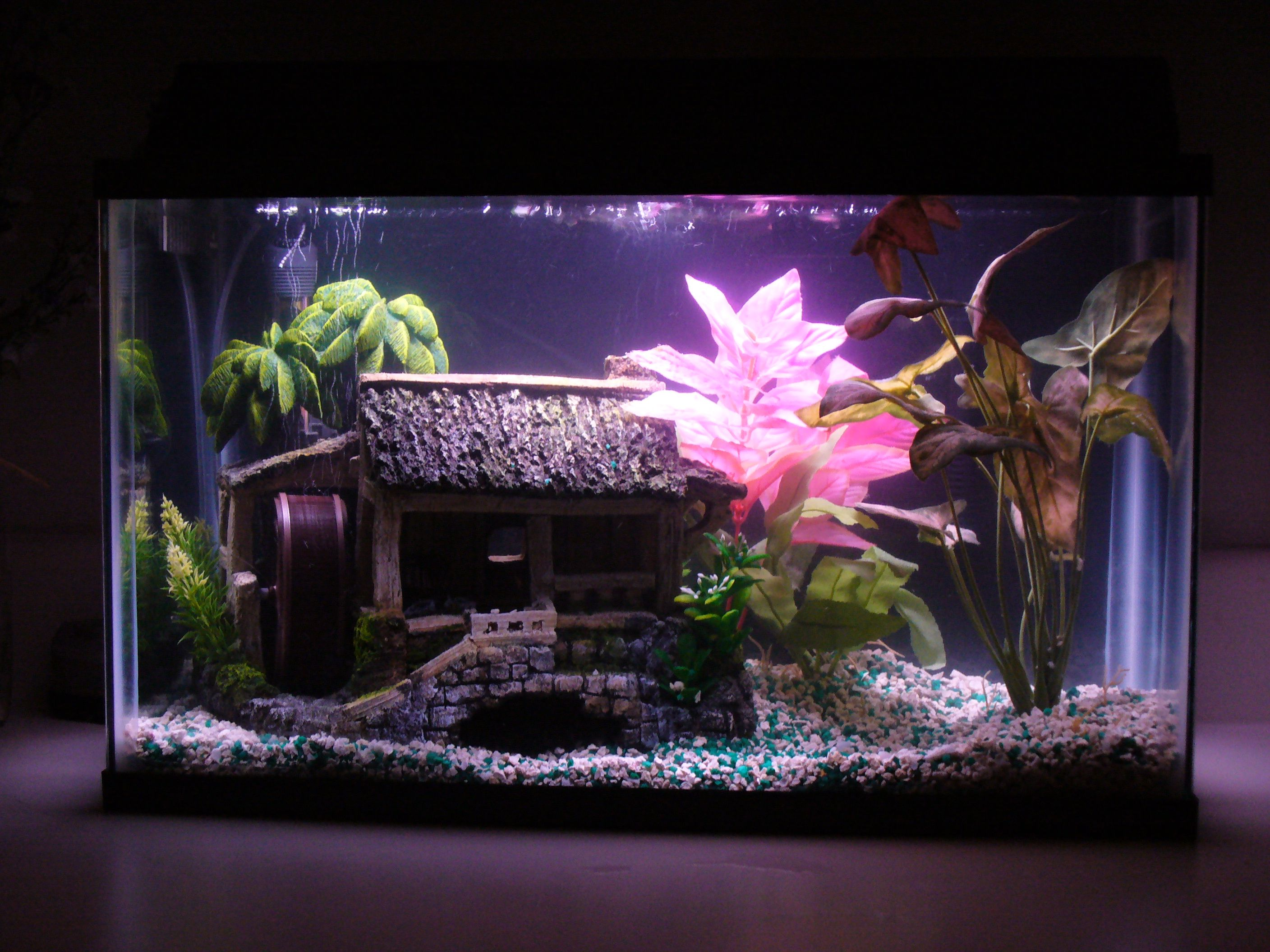 10 Gallon Fish Tank Stand Ideas For Your Aquarium 10 Gallon Fish Tank Fresh Water Fish Tank Fish Tank Stand