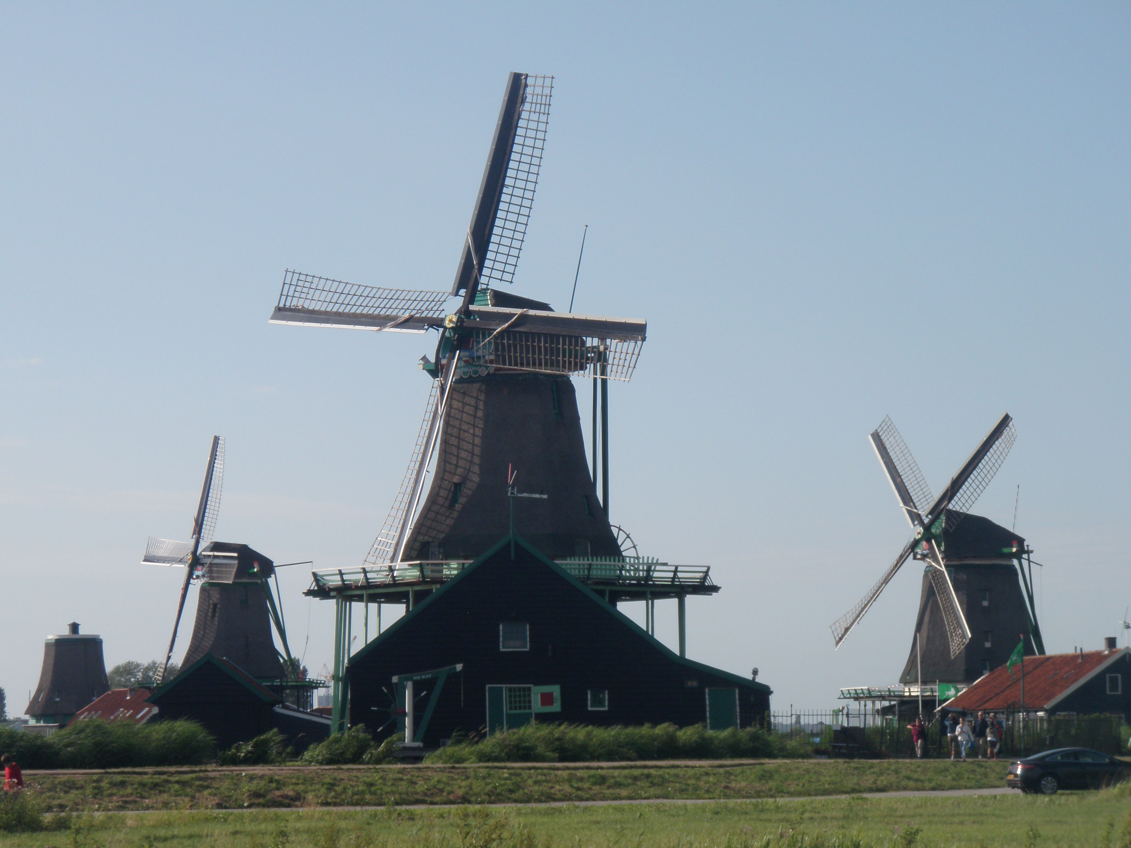 Countryside tour in Amsterdam...gorgeous