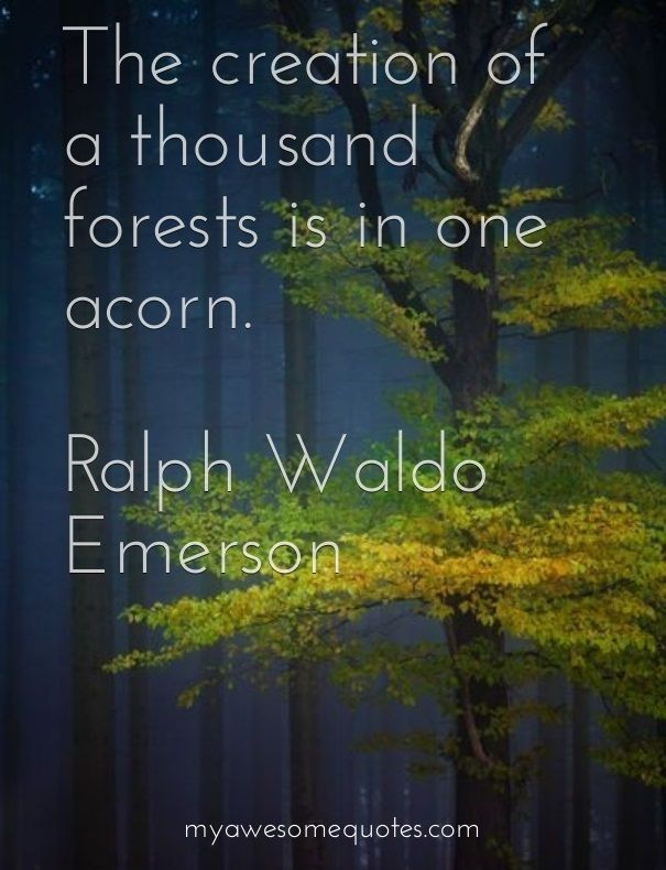 Ralph Waldo Emerson The Creation Of A Thousand Forests Awesome