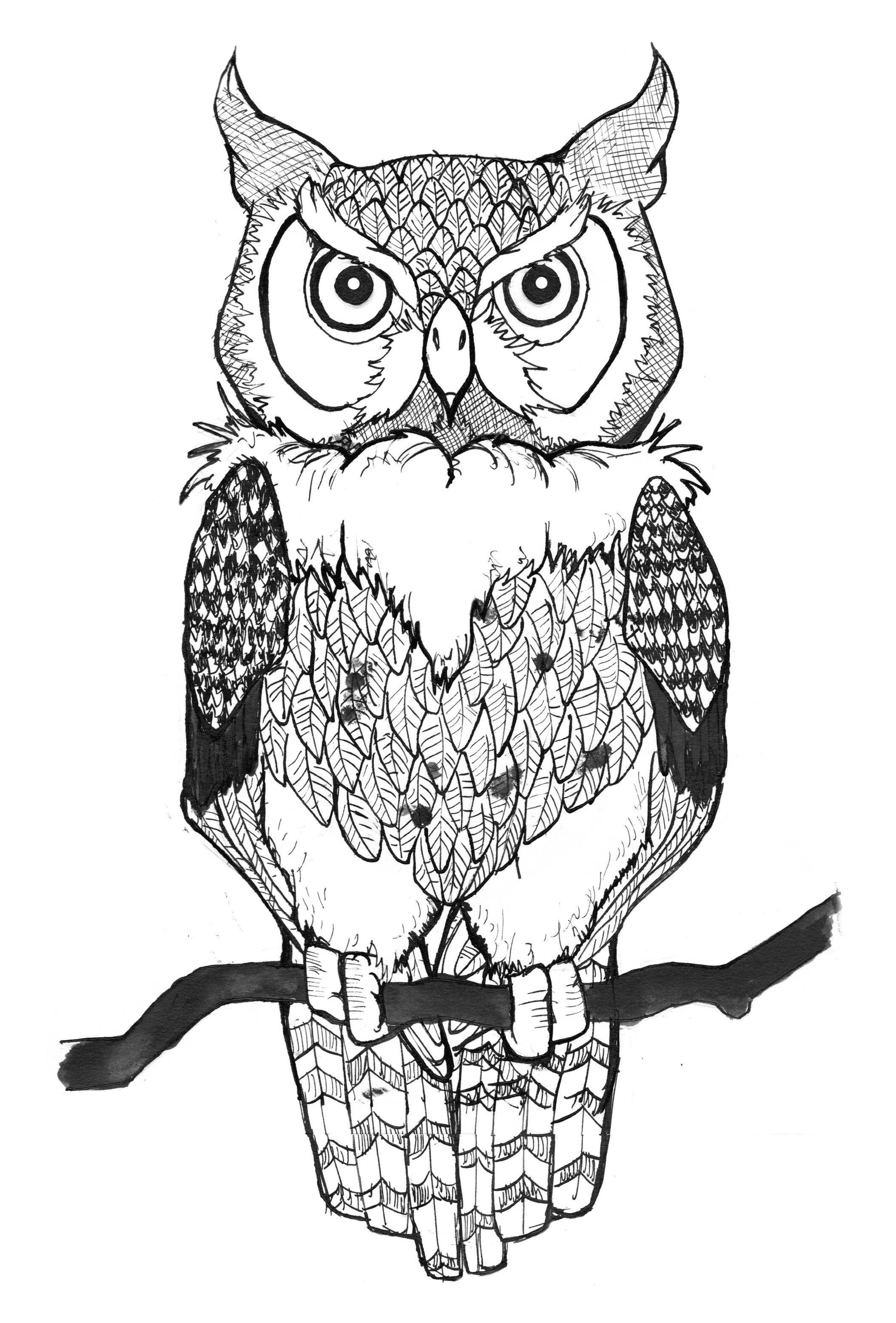 Tattoo Design Owls Drawing Owl Coloring Pages Owl Outline