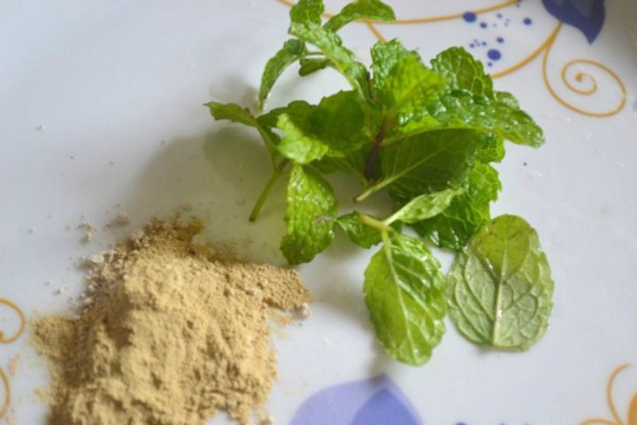 Image result for multani mitti and mint face pack