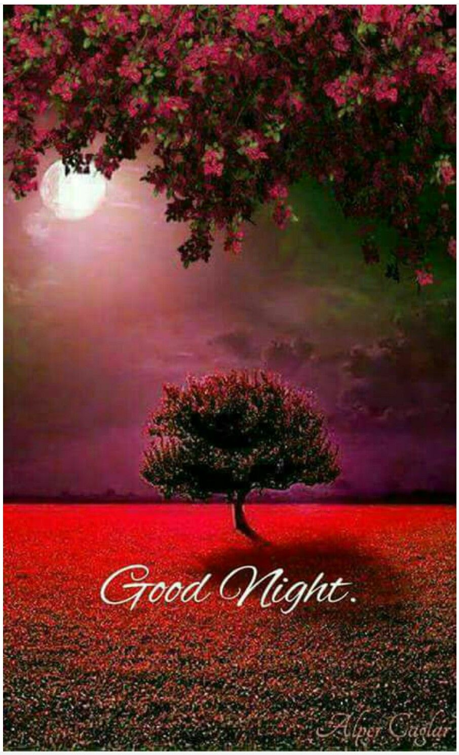 Pin by gopesh avasthi on night nature nature pictures - Good night nature pic ...