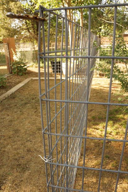 The 25 best dog run panels ideas on pinterest chicken for Inexpensive yard fences
