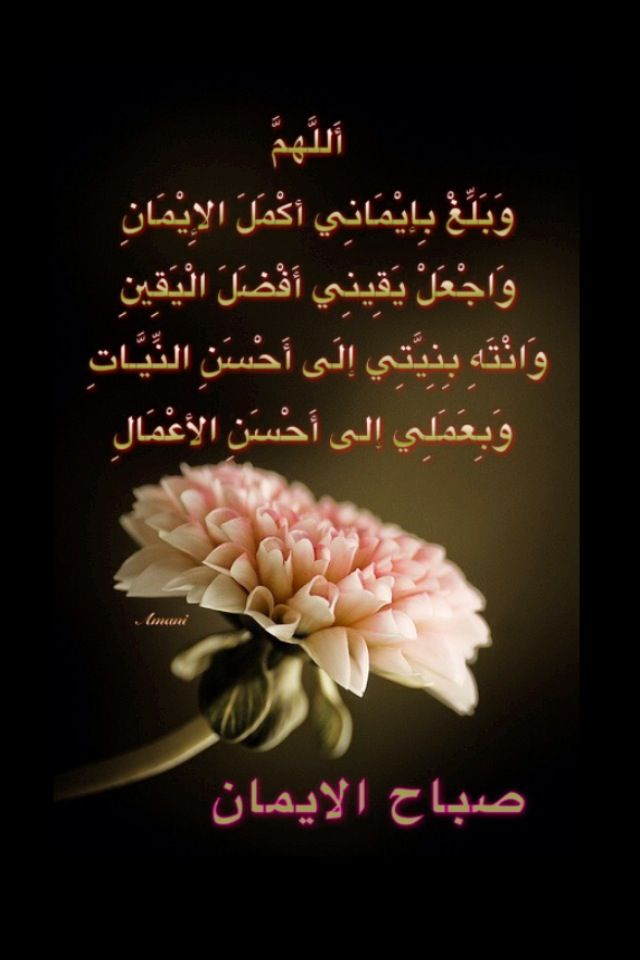 Pin By Amani On دعاء Morning Pictures Romantic Love Quotes Arabic Quotes