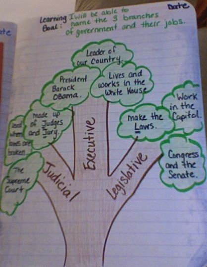 "Students draw a tree (teacher draws an example on the board) and label each branch with the 3 branches on the government.  The ""leaves"" are divided into three sections for each branch and students give one example in each section of leaves.  (This activity can be done with the flower bouquet activity)."