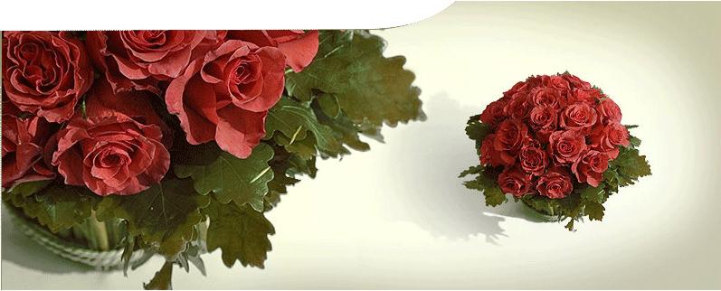 #Flower Great Falls VA #Florist