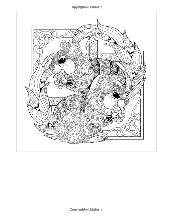 AmazonSmile: Adult Coloring Book: Giant Super Jumbo Coloring Book of ...