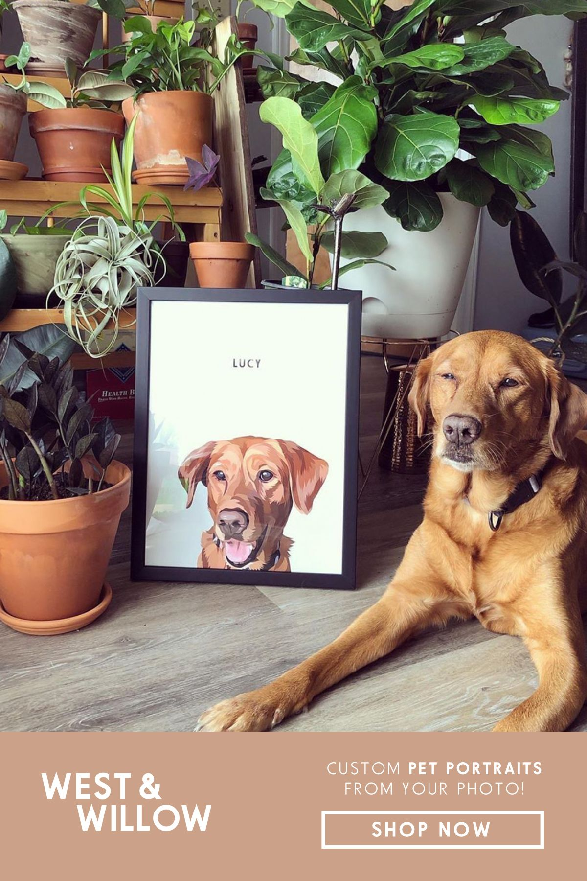 Personalize your home with a modern pet portrait! Simply