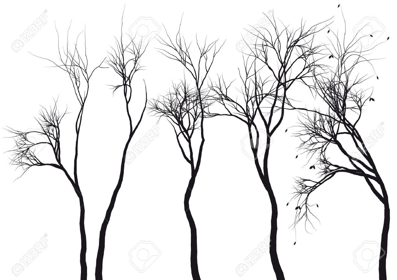 Transparent Png Cliparts Page 35 Picture Tree Winter Trees Tree Art