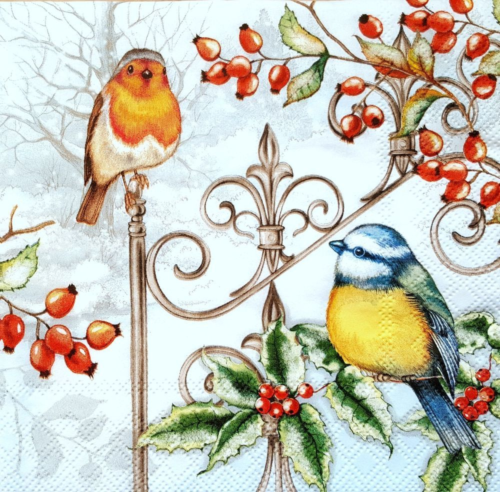 4 Lunch Paper Napkins for Decoupage Table Craft Vintage Art Napkin Bird House