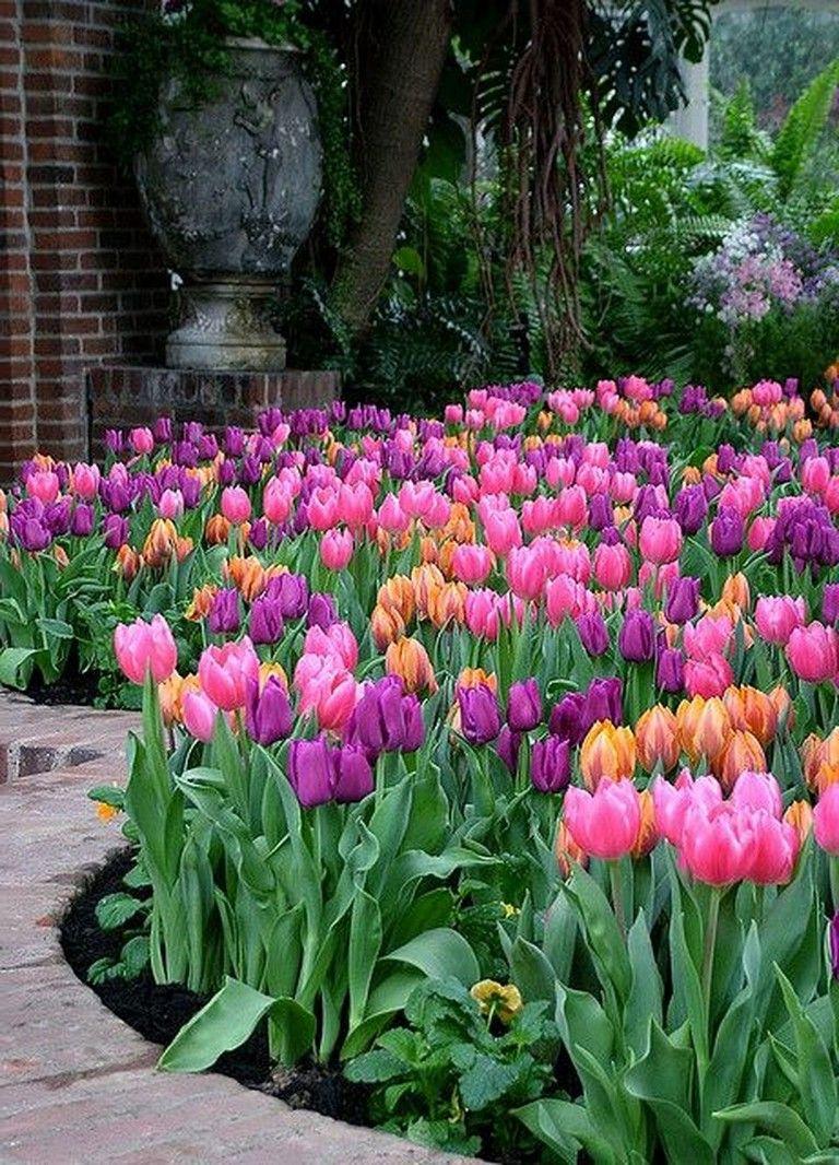 24 Wonderful Tulips Arrangement Tips For Your Home Garden