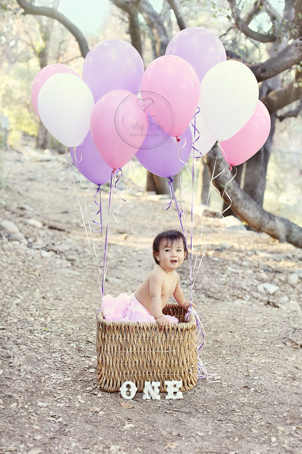 1st Birthday Photography Balloons Basket Hot Air Balloon