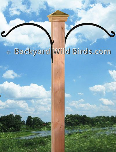 Heavy Duty Bird Feeder Pole Hurley Byrd How Installing A Large Mounted Droll Yankees Adjule Deck Clamp Hanger For