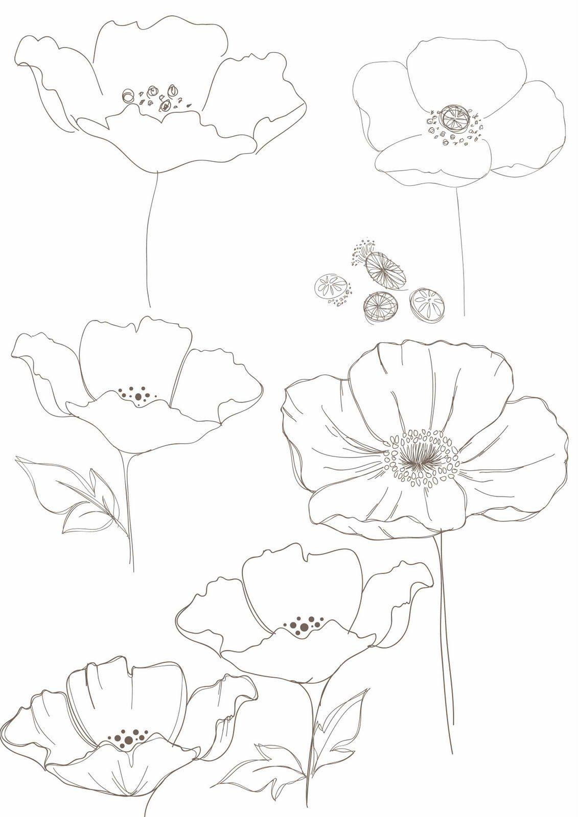 Bobbieprint Blumen Zeichnung Blumenzeichnungen Blumen Zeichnen