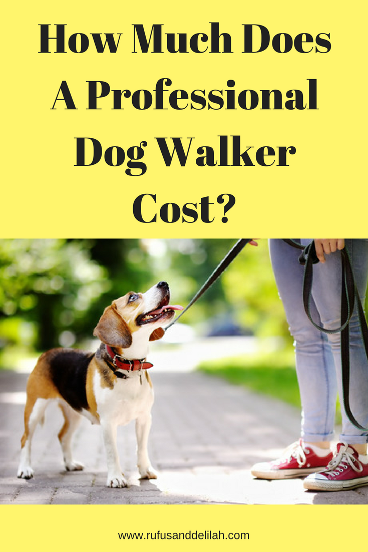 How Much Does A Professional Dog Walker Cost Dog Walker Dog Training Dog Walking Business