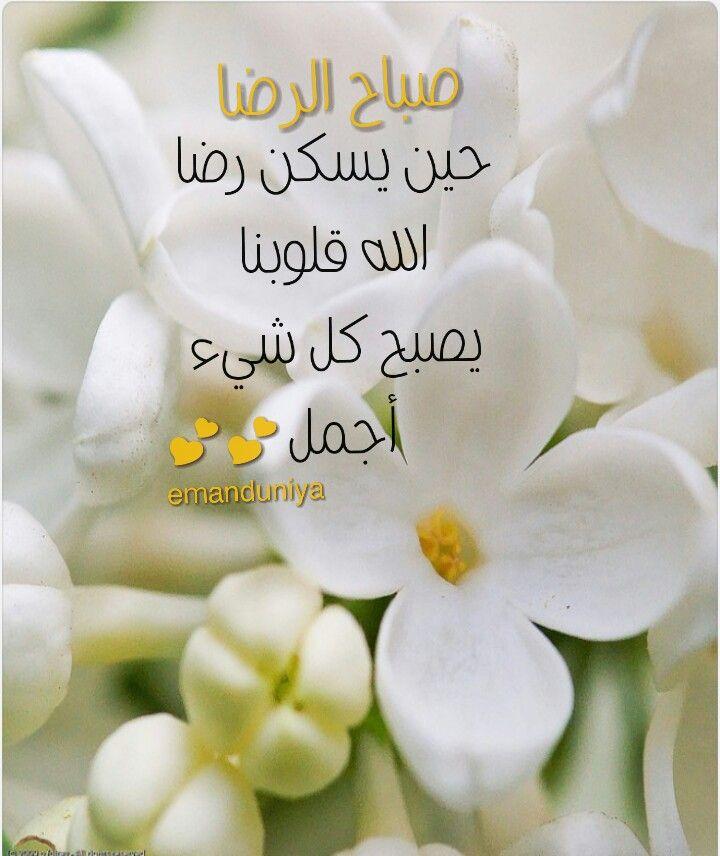 Pin By Eman Duniya On صباح الخير Beautiful Morning Messages Good Morning Flowers Good Morning Images