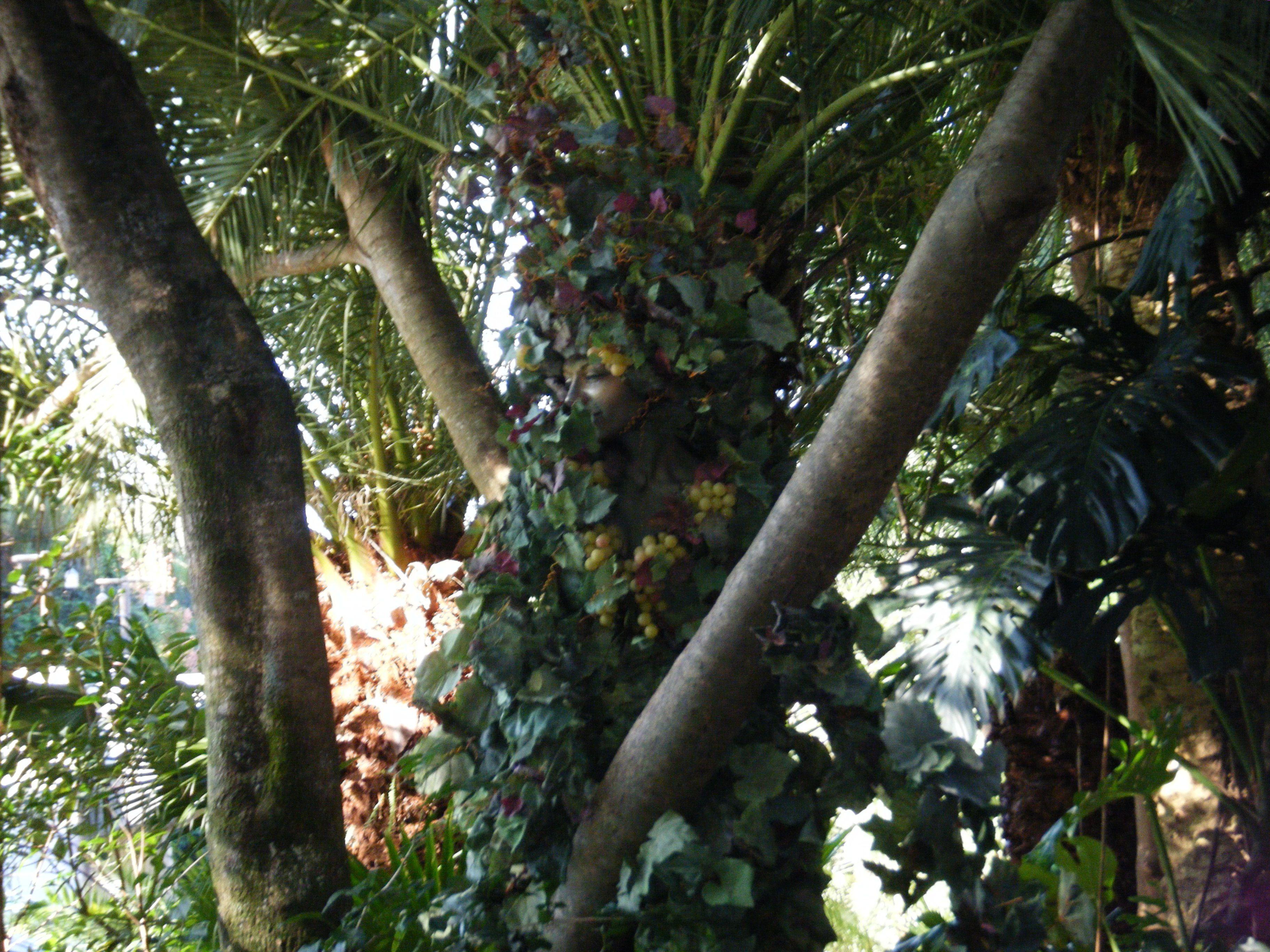 """A """"living"""" tree in Disney's Animal Kingdom Park in Orlando, FL"""