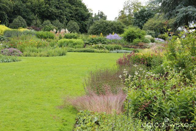 Galeria zdjęć - Ogrody angielskie - Bressingham Gardens w lipcu 2012 - Ogrodowisko