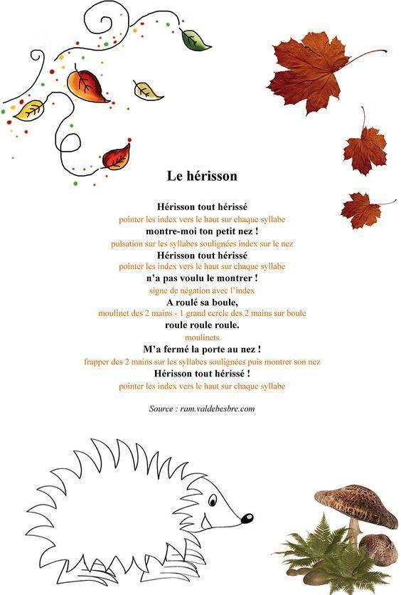 Comptines Le Hérisson Comptines Comptine Automne Et