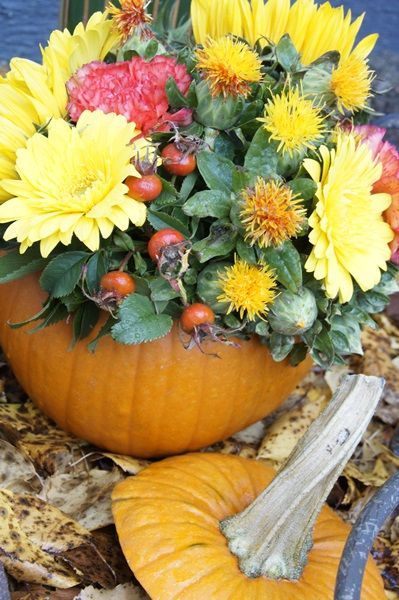 So cute! Totally doing this with my un-carved pumpkin from Halloween :)