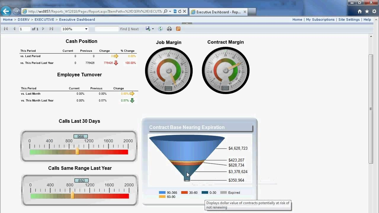 Executive Dashboard With Ssrs Best Templates Executive Dashboard Templates