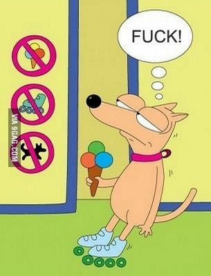 No Dogs No Roller Skates No Ice Cream Funny Cartoon Memes