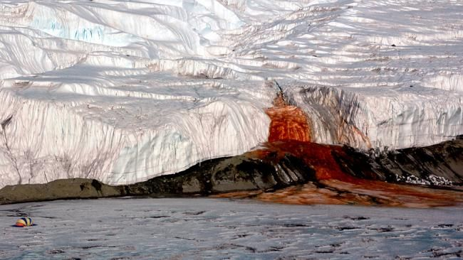 Blood Falls: Antarctica's Stunning Secret  In the remote McMurdo Dry Valleys in Eastern Antarctica, a slow ooze of vivid crimson seeps from a fissure in the Taylor Glacier and onto the frozen surface of Lake Bonney.