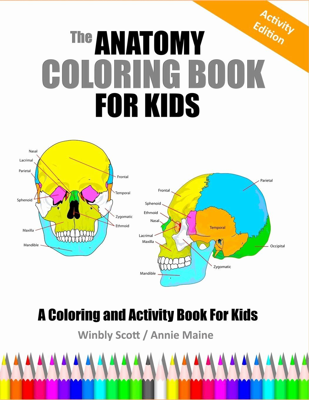 The Anatomy Coloring Book Beautiful Amazon The Anatomy Coloring Book For Kids A Coloring Anatomy Coloring Book Coloring Books Book Activities