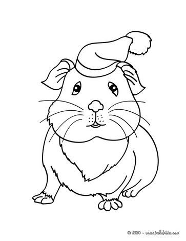 This lovely Guinea pig wearing a hat coloring page is so cute. Nice ...