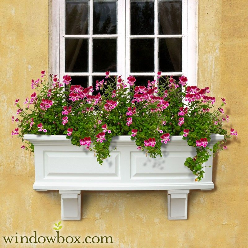 White Window Box With Pink Flowers Yellow Stucco Wall