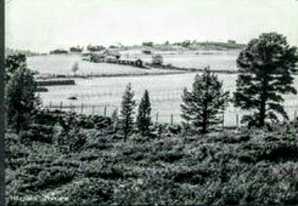 Oppland fylke Gudbrandsdalen Nord-Fron kommune Kvam Haugsætra. Rondane. Stemplet 1965