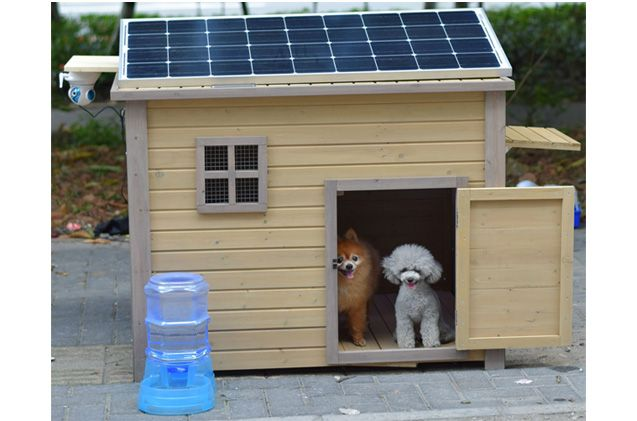 Go Green With Solar Heat For Your Dog House Dog House Dog House Diy Heated Dog House