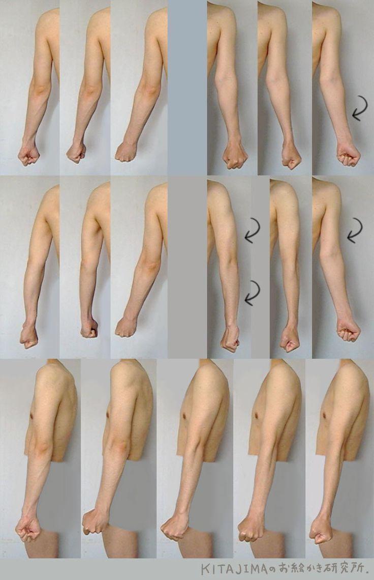 Image result for female arm joint anatomy   Bod_Ref   Pinterest ...