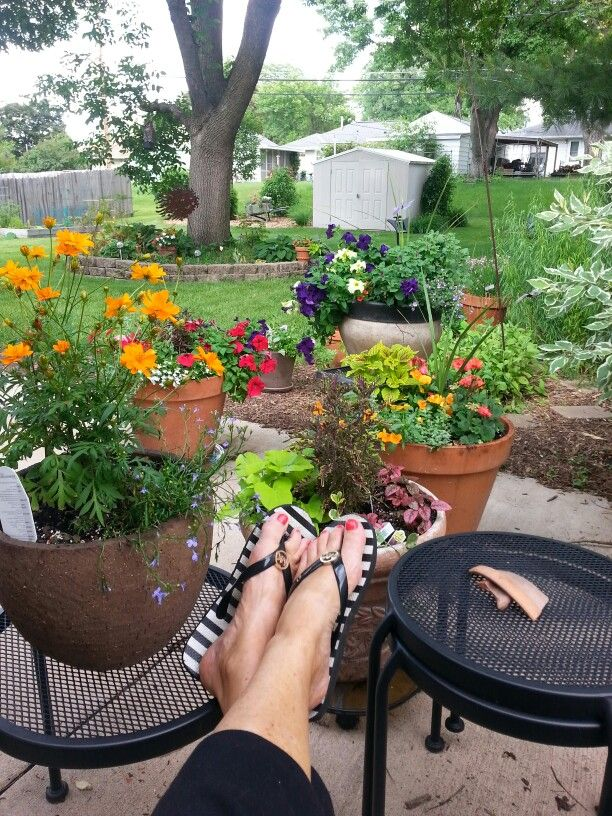 Love my backyard