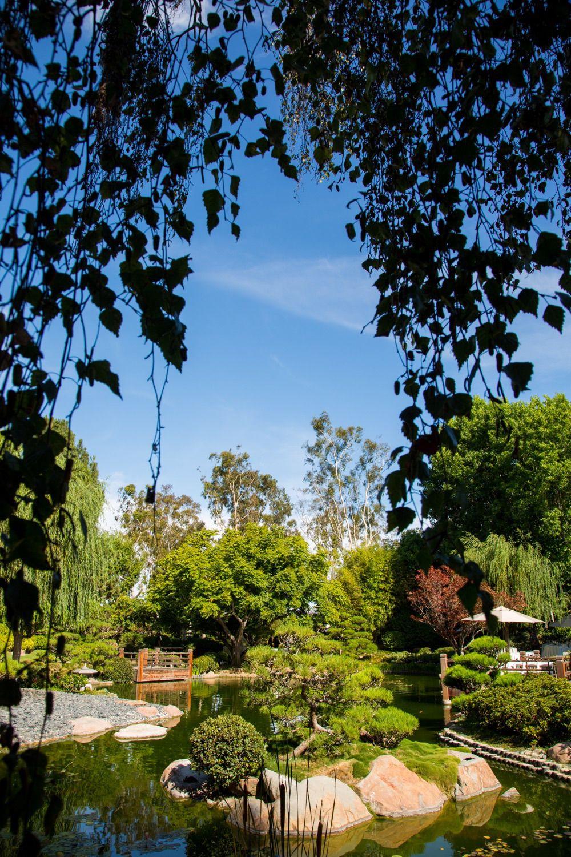 Earl Burns Miller Japanese Garden Wedding Venue Csu Long Beach California Ebmjg Beauty